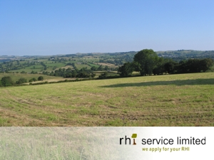RHI Service Local View