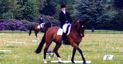 Vikki Lower Equestrian
